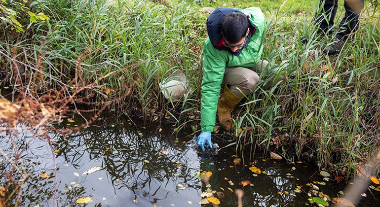 University of Exeter | Jonathan Panduro Findalen - Greenpeace | Dr Jorge Casado collecting a water sample.