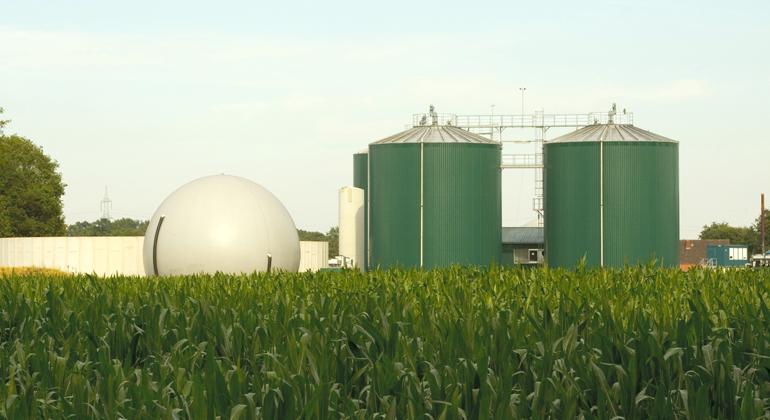 Dirk Grasse | piclease | Biogas ist nach Ansicht der DBU eine wichtige erneuerbare Energiequelle, die direkt speicherbar ist. Damit kann sie wesentlich zur Deckung des Strombedarfs beitragen, wenn weder Wind noch Sonne Energie liefern