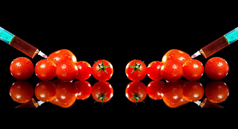 Übernehmen Bioreaktoren unsere Ernährung?