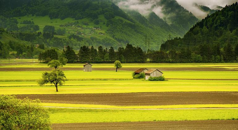 Wald- und Weidewirtschaft treibt Klimawandel an