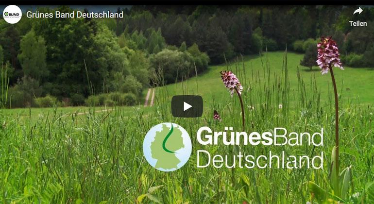 BUND   Das Grüne Band ist Natur - Es ist eine rund 1.400 Kilometer lange Lebenslinie, die sich entlang der ehemaligen innerdeutschen Grenze vom Ostseestrand bis ins sächsisch-bayerische Vogtland zieht.
