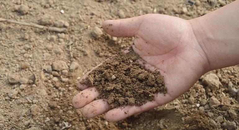Der Boden als Bioreaktor