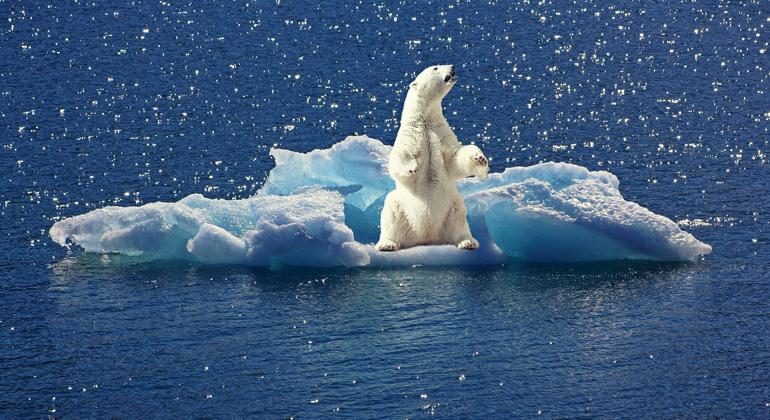 Strategien gegen die Desinformation zum Klimawandel