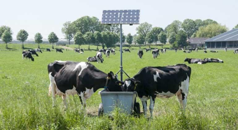 IPPC-Bericht belegt: Landwirtschaft muss sich ändern