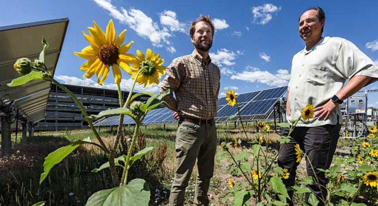 Researchers Propose Techno-Ecological Synergy for Solar-Sustainability Win-Win