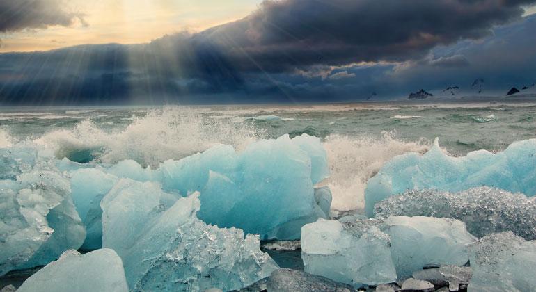 Keine Algenblüte in der eisfreien Arktis