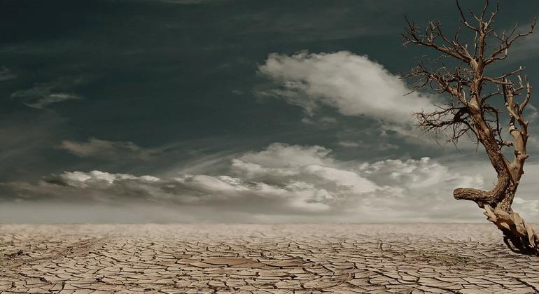 pixabay.com | Marion | Ein weltweites Problem: Wo es Wüsten gibt, wachsen sie.