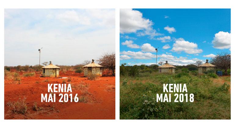 justdiggit.org/de | Kenia Mai 2016 und Mai 2018