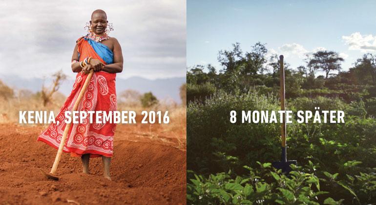 justdiggit.org/de | Kenia 2016 und nach 8 Monaten