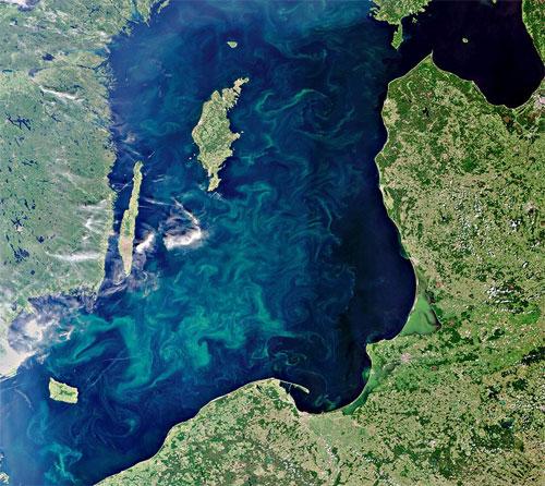 ESA /CC-by-sa IGO | Envisat-Satelliten: Algenblüte in der Ostsee