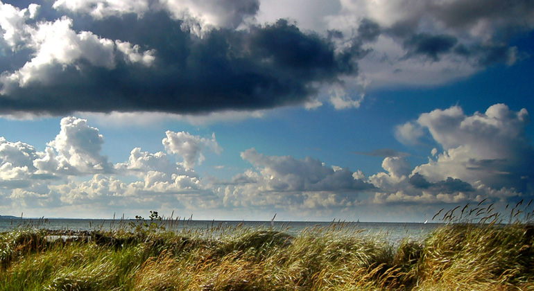 Is the Baltic Sea at a crossroads? Future scenarios for the combined effect of climate change and nutrient load