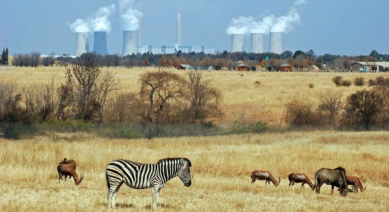 Kohle-Boom in Subsahara-Afrika