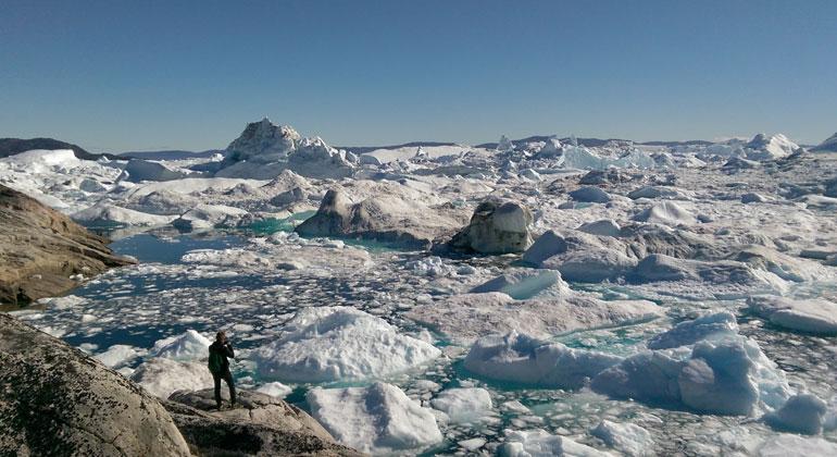 tu-dresden.de | imbie.org | ReneForsber_| Iceberg Ilulissat