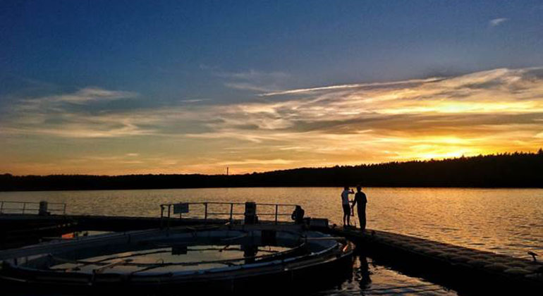 Study shows lake methane emissions should prompt rethink on climate change