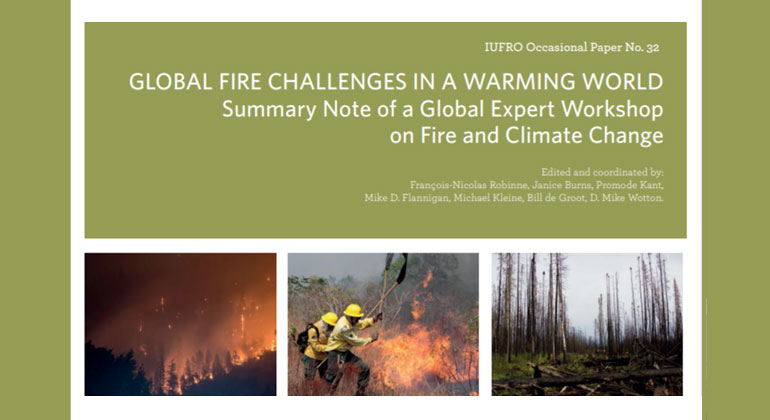 Global Fire Challenges in a Warming World