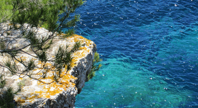 Climate emergency: Local and regional leaders call for a Green Deal for  the Mediterranean