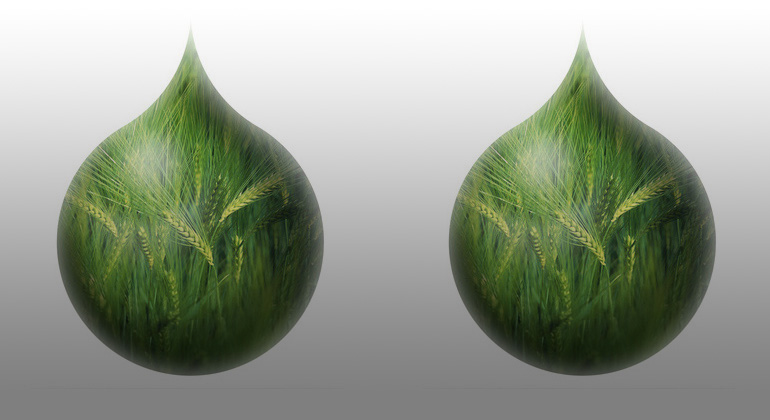 Renewable Fuels Are Crucial