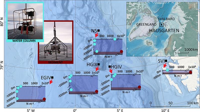 Alfred-Wegener-Institut, Mine Tekman | Mikroplastik in der Wassersäule und in den Sedimenten an fünf Stationen des HAUSGARTEN-Observatoriums in der Arktis (N m-3). Die Proben der Wassersäule wurden mit großvolumigen Pumpen und die Sedimentproben mit einem Mehrfach-Korer entnommen.