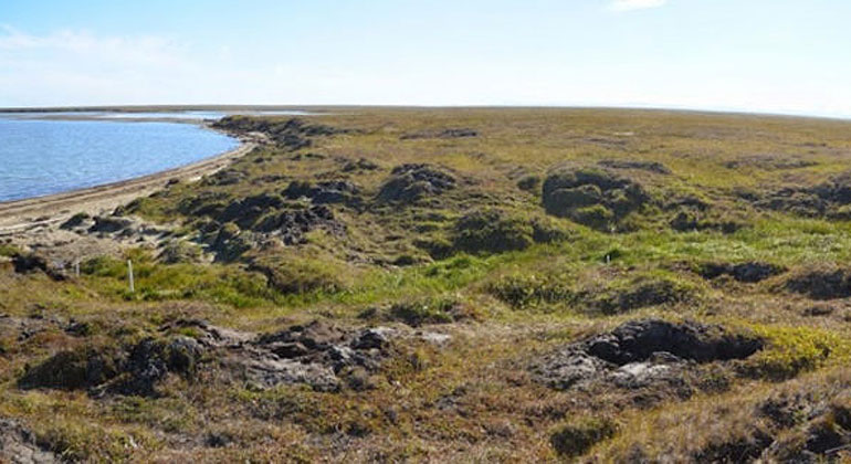 M. Bayani Cardenas, University of Texas at Austin | Panoramic image showing one of the research team's study sites near Kaktovik, Alaska. Shallow groundwater flows beneath the tundra surface into the adjacent lagoon.