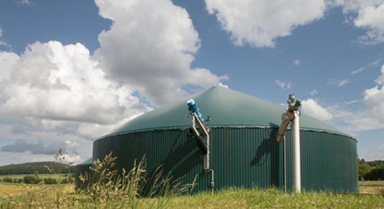 """Statement zum Kohleausstiegsgesetz: """"Bundesrat hat Chancen der Bioenergie erkannt"""""""