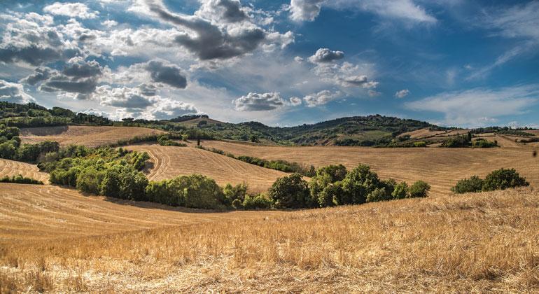 pixabay.com | Skitterphoto | Vielen Landwirten macht derzeit vor allem die Trockenheit zu schaffen. Vor allem im Frühjahr hat sich die Dauer längster Trockenperioden in den vergangenen Jahrzehnten um etwa zehn bis zwanzig Prozent verlängert.