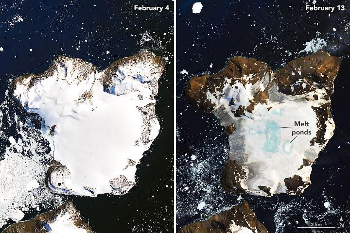 Joshua Stevens/NASA Earth Observatory | 4. - 13. Februar 2020 | Eagle Island vor der Antarktischen Halbinsel: Hier war der Eisverlust im vergangenen Monat besonders hoch.