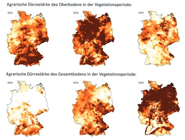 klimafakten.de | In den letzten Jahren hat sich das Ausmaß von Dürre in Deutschland sowohl für den Oberboden als auch für den Gesamtboden deutlich verstärkt. Vor allem das Jahr 2003 sowie die Jahre 2018 und 2019 waren extrem trocken. Die meteorologische, hydrologische und landwirtschaftliche Dürre hat zu großen sozio-ökonomischen Problemen geführt.