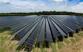 GroenLeven | Die Sonnenkollektoren sind eine nachhaltigere Form des Schutzes für die Pflanzen.