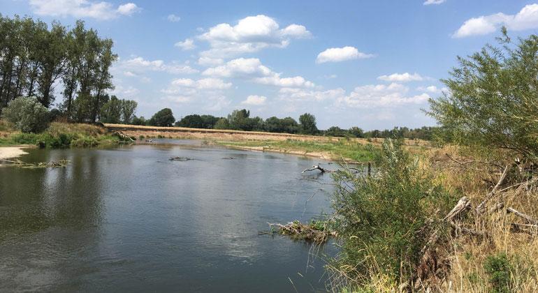Isabell Juszczyk/Aueninstitut | In Zeiten des Klimawandels sind Anpassungen nötig. Wie etwa Fließgewässern mehr Raum zu geben, wie der Mulde bei Laussig (Sachsen). So kann das Wasser in der Landschaft gehalten und Hochwasser vermindert werden.