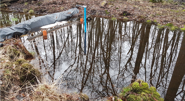Johannes Meßer/Lippe Wassertechnik GmbH | Die Deutsche Bundesstiftung Umwelt rät dazu, Wasser in der Landschaft zu halten, wie hier durch einen temporären Damm im Deutener Moor.