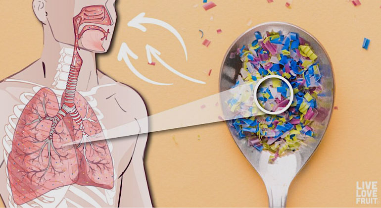 LiveLoveFruit | Der eingeatmete, unsichtbare Mikrostaub kann die Lunge angreifen
