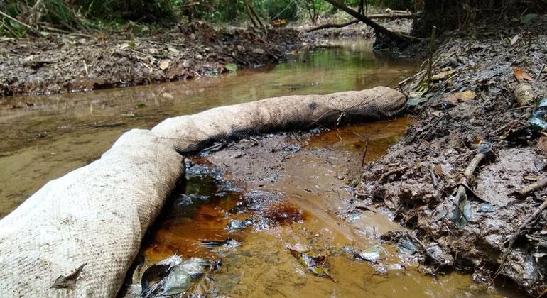 Ecuador: Die stille Umweltkatastrophe im Amazonas