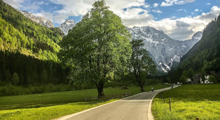unsplash.com | Mr.-Söbau | Derzeit leben ca. 86 Prozent der Weltbevölkerung im Umkreis von 2 km um eine Straße. Fast alle Menschen ans Straßennetz anzuschließen wäre teuer, aber nicht so sehr für das Klima.