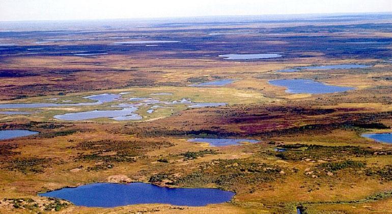 WikimediaCommons | Dr. Andreas .Hugentobler | Sibirien war im ersten Halbjahr dieses Jahres außergewöhnlich warm.