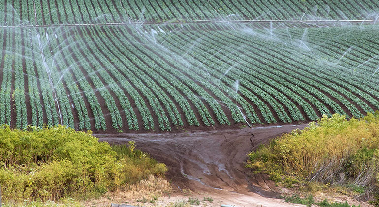 Climate change and land use are accelerating soil erosion by water