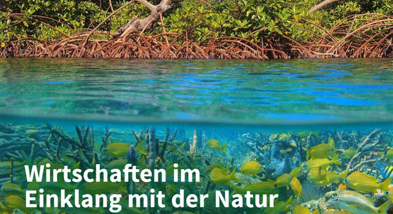 NABU | Studie: Wirtschaften in Einklang mit der Natur - Handlungswege zur Sicherung der Biodiversität.