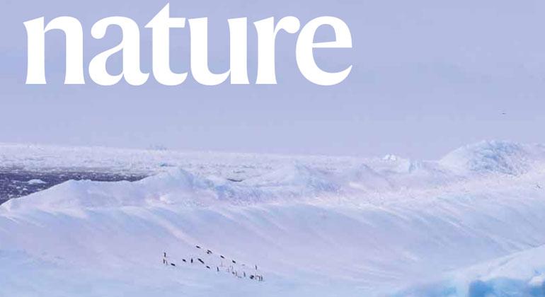 Photo: Torsten Albrecht, PIK | Nature cover with PIK Antarctica study, showing Adélie penguins on a capsized iceberg in the Weddell sea, Antarctica.
