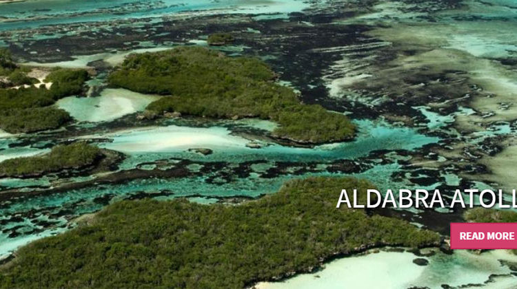 Seychelles Islands Foundation | Aldabra Atoll