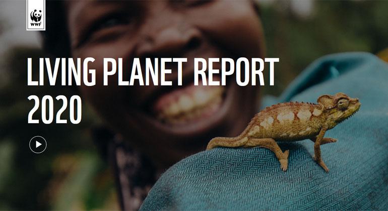 WWF_Living Plane tReport 2020
