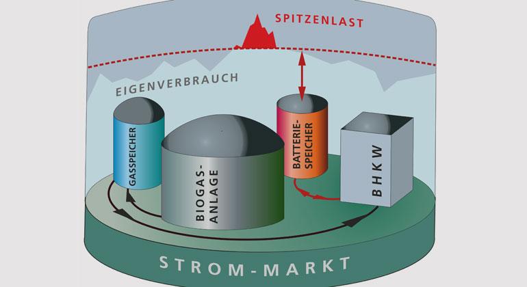 BioBatSys| Fraunhofer IEE | U. Werner