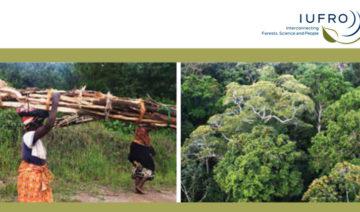 IUFRO   Eine Kernbotschaft des globalen Wissenschaftsberichts ist somit, dass die Armen selten die HauptnutznießerInnen der Güter, die Wälder und Bäume bieten, sind, auch wenn diese für den Erhalt ihrer Lebensgrundlage unverzichtbar sind.
