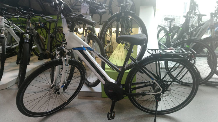Bigi Alt | E-Bike