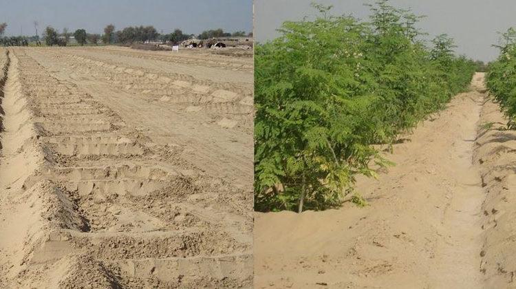 desertcontrol.com | Ein Jahr später in Pakistan