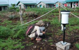 Flickr.com | CIFOR | JamesMaiden | Kohlenstoffmessung auf Sumatra: Wie viel CO2 werden die Böden in Zukunft emittieren?
