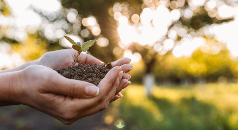 Gesunde Ernährung für 10 Milliarden Menschen im Einklang mit Natur und Umwelt