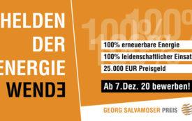 georg-salvamoser-preis.de