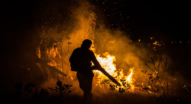Fires also threaten Brazil's second largest ecosystem