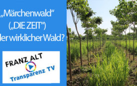 TransparenzTV | Plant for the Planet
