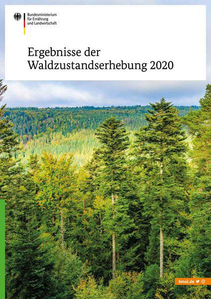 BMEL   Waldzustandserhebung 2020