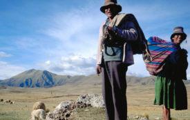 IFAD | Indigene Völker verfügen über ein wesentliches Wissen für den Wiederaufbau einer nachhaltigeren und widerstandsfähigeren Welt nach der Pandemie.